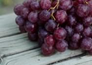 赤ワインとポリフェノールのからだにやさしい関係の詳細へ