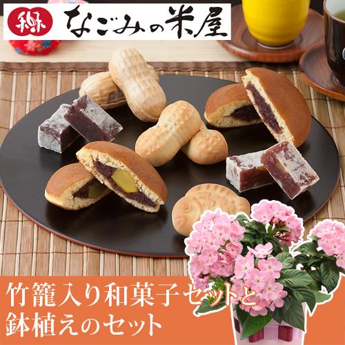 敬老の日 におい桜鉢植えセット「なごみの米屋 竹籠入り和菓子セット」