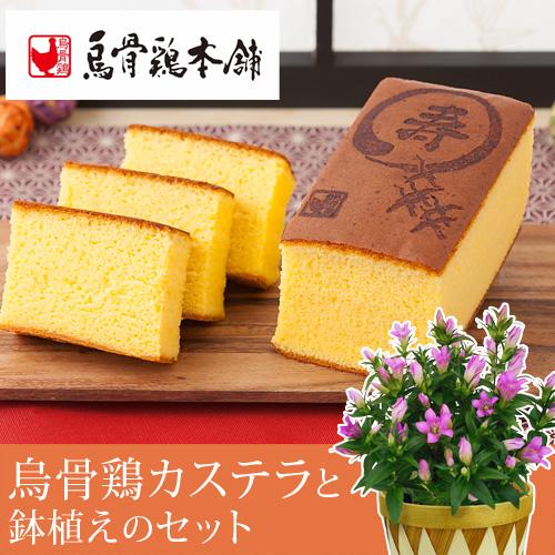 敬老の日 りんどう鉢植えセット「烏骨鶏カステラ~「寿」焼印入り~」