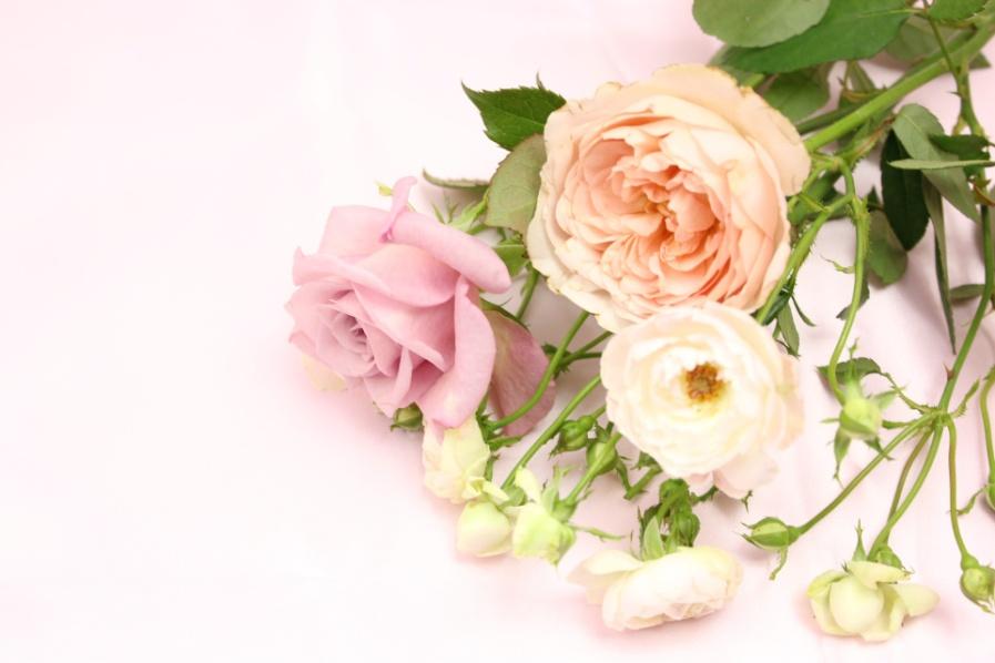 「感謝」を伝える花の選び方と、知っておきたい花言葉