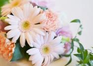 10月の誕生花『ガーベラ』の花言葉、花長持ちの秘訣の詳細へ